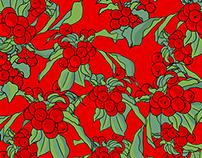 APPLES ILLUSTRATION / RED SALE
