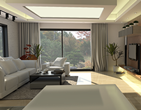 Semi Vintage House Interior 3D Works