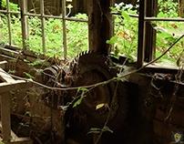 Old Carpentry