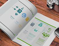 360 Process Visual Design