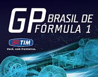 GP F1 2014 | TIM