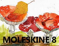 Moleskine #8