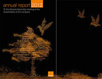 Orange Annual Report