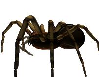 Araña 3d/ 3d spider