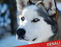 Denali Sled Dogs Kennel products