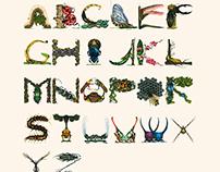 Arthropod Alphabet