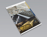 Metallon Corporation Ltd 2013 Annual Report