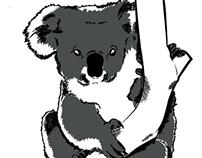 Koala sketch