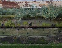 Photographic Textures
