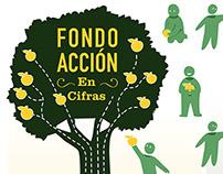 Fondo Accion 2013 Infographic