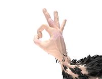 Hen Hand