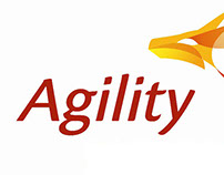 Agility Project Work