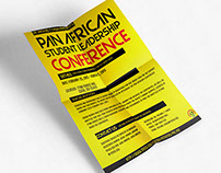 Pan African Conference 2015 Poster