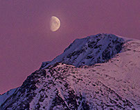 Purplel Moon
