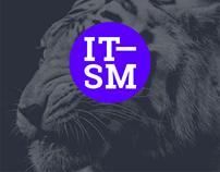 IT—SM company