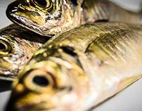 Peixish