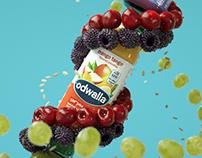 Odwalla Campaign