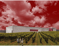 WCC_ Wine Culture Centre