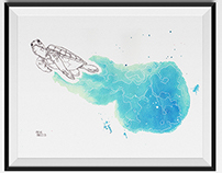 Watercolor Turtles