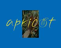 Apricot | typography