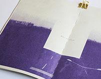 Vanish sonata -photography edition