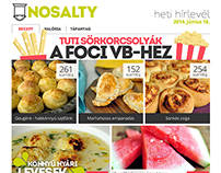 NoSalty newsletter designs