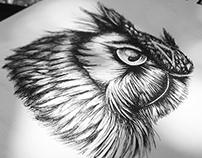 The Owl illustration