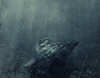 Unter Wasser | Under Water