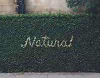 Design is Natural