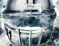 NFL Preview 2014
