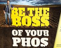 Phos Boss