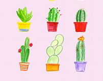Cacti Birthday Cards