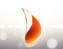 2013 HEBTV brand design