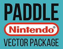 Paddle Nintendo vector package