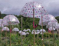 Les parapluies de Wesserling