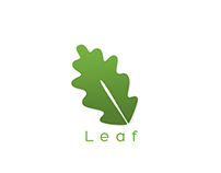 Leaf logo and branding concept
