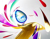 2014 YNTV brand design