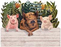 Pig Problems