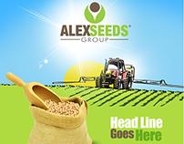 AlexSeeds Flyer