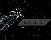 BlackBird - Epic Opening