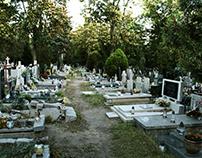 Photo - Cemetery of Saint Wawrzyniec in Wroclaw