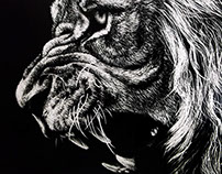 Lion - Scientific Illustration