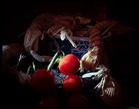 Stilllife with mantis shrimps