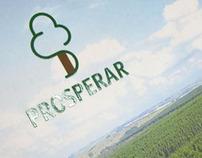 Programa de Fomento Florestal Ripasa
