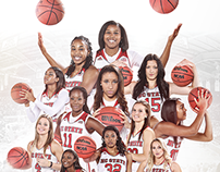 2014-15 NC State Women's Basketball Poster