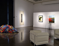 2015 Exhibitions