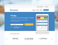 Bluenose Analitycs - landing page