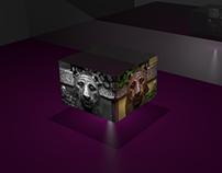 Lion's box