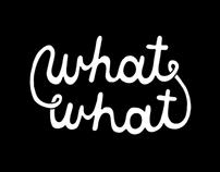 Rob Van Vuuren - What What