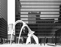 Mies van der Rohe In Chicago